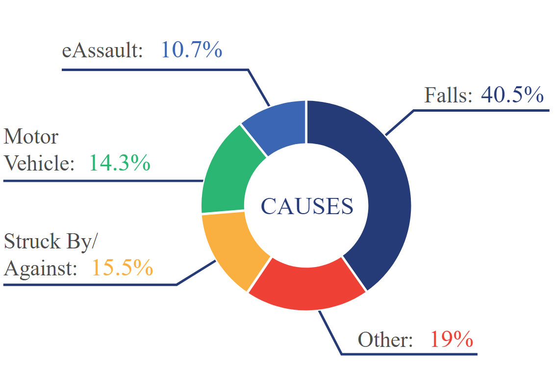 hight resolution of  injury are pie chart