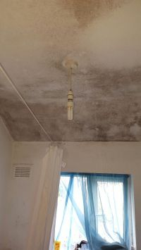 condensation on ceilings