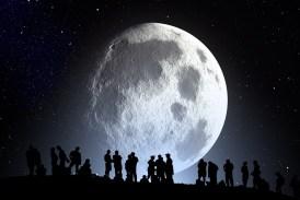 Zahrada podle fáze Měsíce