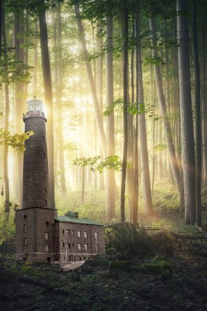 LighthouseInForest