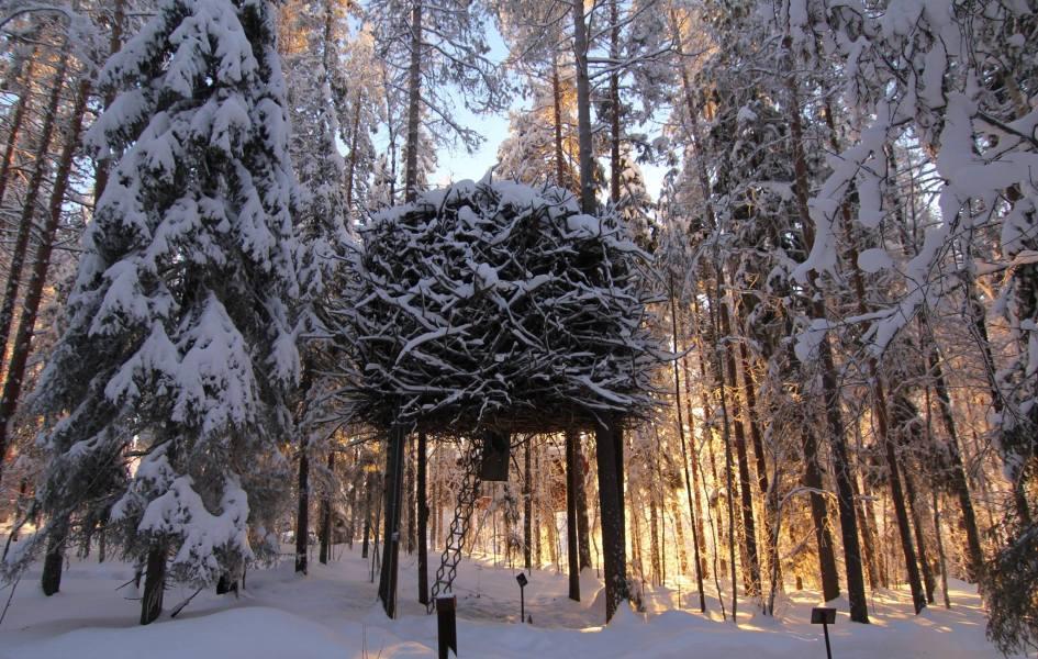 Bird's nest Tree Hotel, Sweeden