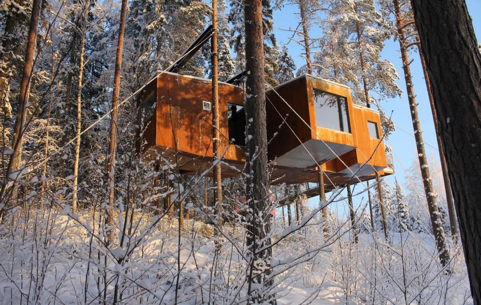 Dragonfly, The Tree Hotel, Sweeden