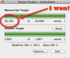 NaNoWriMo Word Count