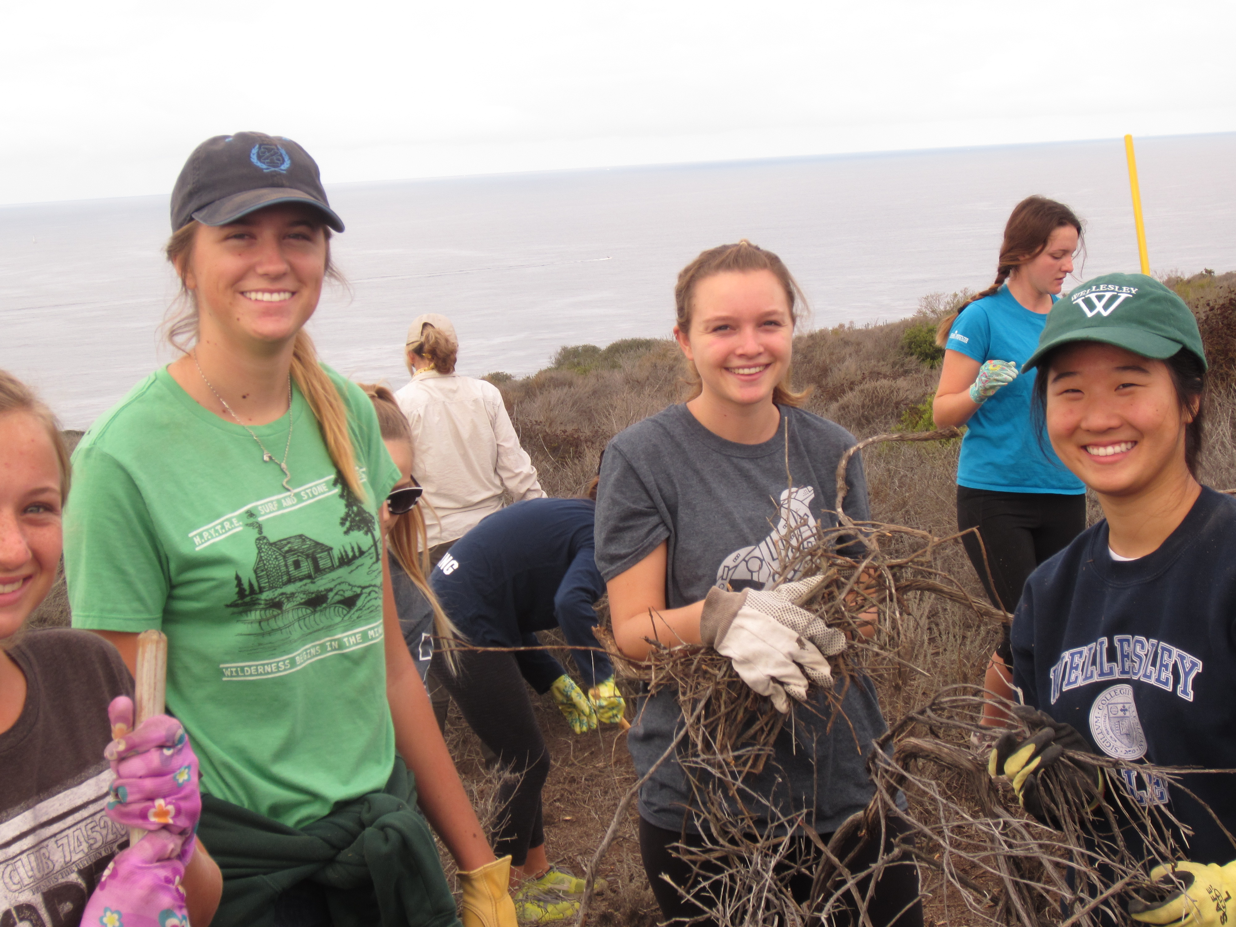 Area Students Shine In Dana Point Habitat Enhancement
