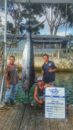 L to R: Dana Wharf Capt. Chris Pica, Dan Johnson and Jonathon Cooper pose with the Reel Fun's first-ever blue marlin. Photo: Courtesy Dana Wharf Sportfishing