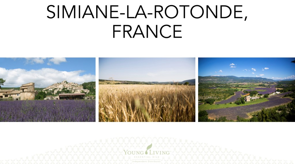 Young Living, Young Living Essential Oils, Farms, Seed to Seal, France