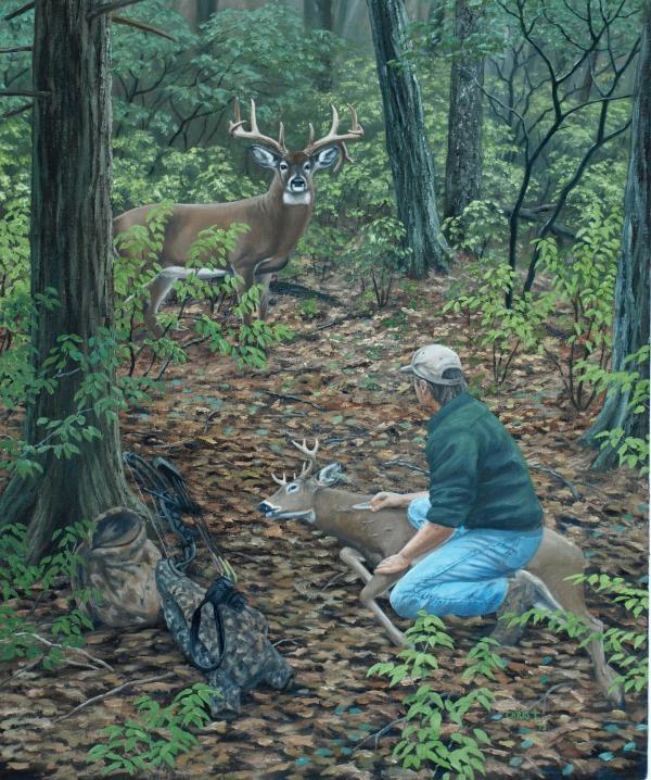 Whitetail Deer Art Prints