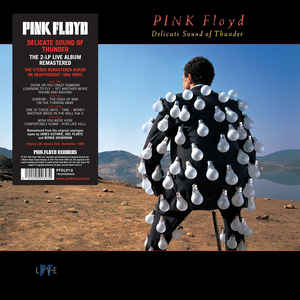 PINK FLOYD - DELICATE SOUND OF THUNDER...LP2