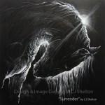 Surrender by CJ Shelton