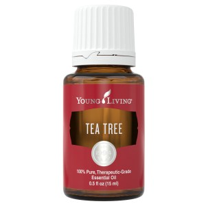 Young Living Teebaum Öl 15ml