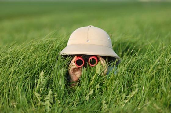 binoculars-grass