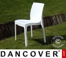 Chair, Ice, Glossy white, 6 pcs.