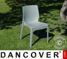 Chair, Rome, Grey, 18 pcs.