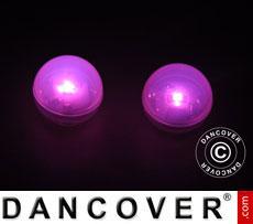 Party light, Fairy Berry, LED Pink, 24 pcs.