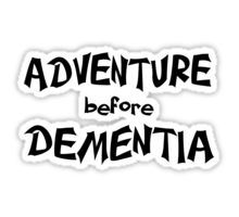 Adventure before Dementia decal