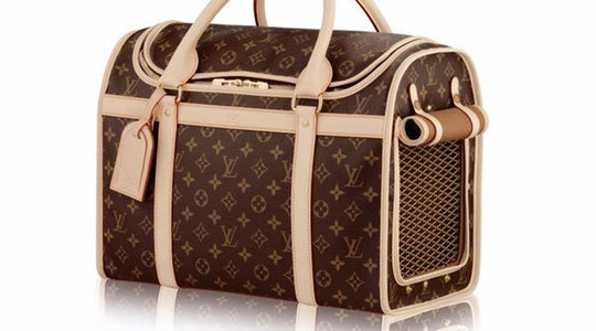 The luxury gift guide of expensive gifts for dogs