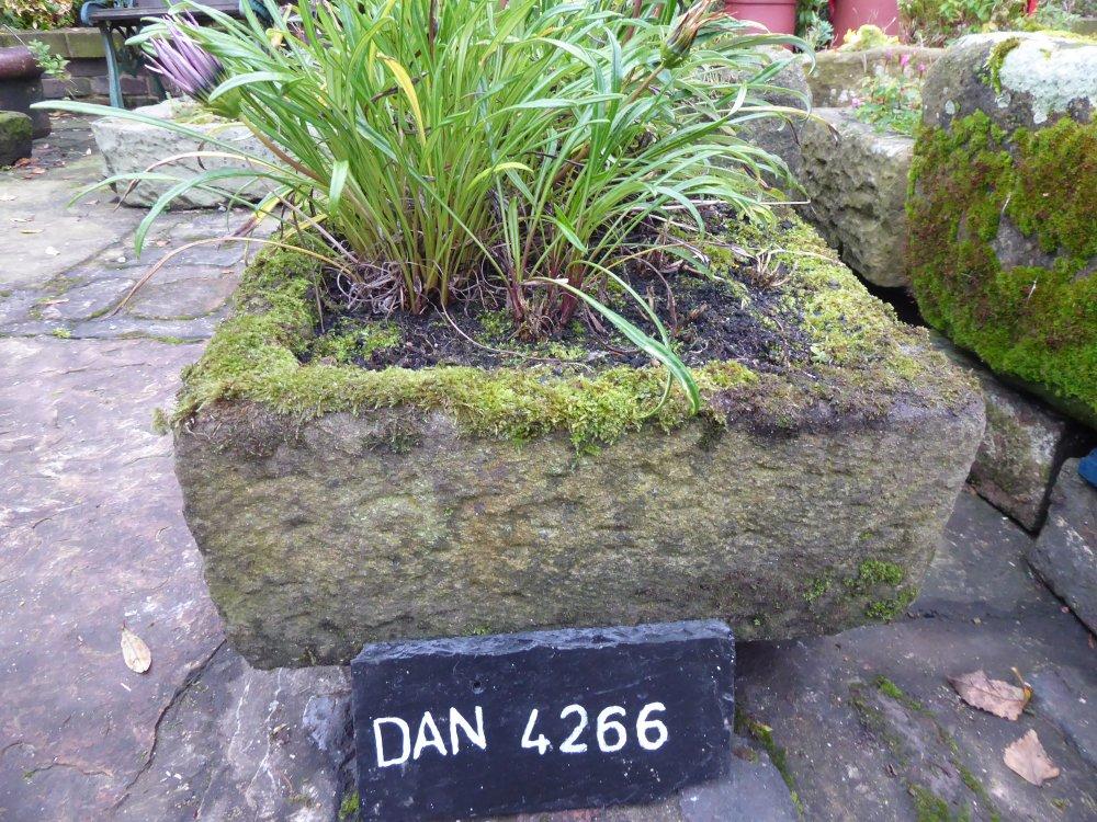DAN 4266
