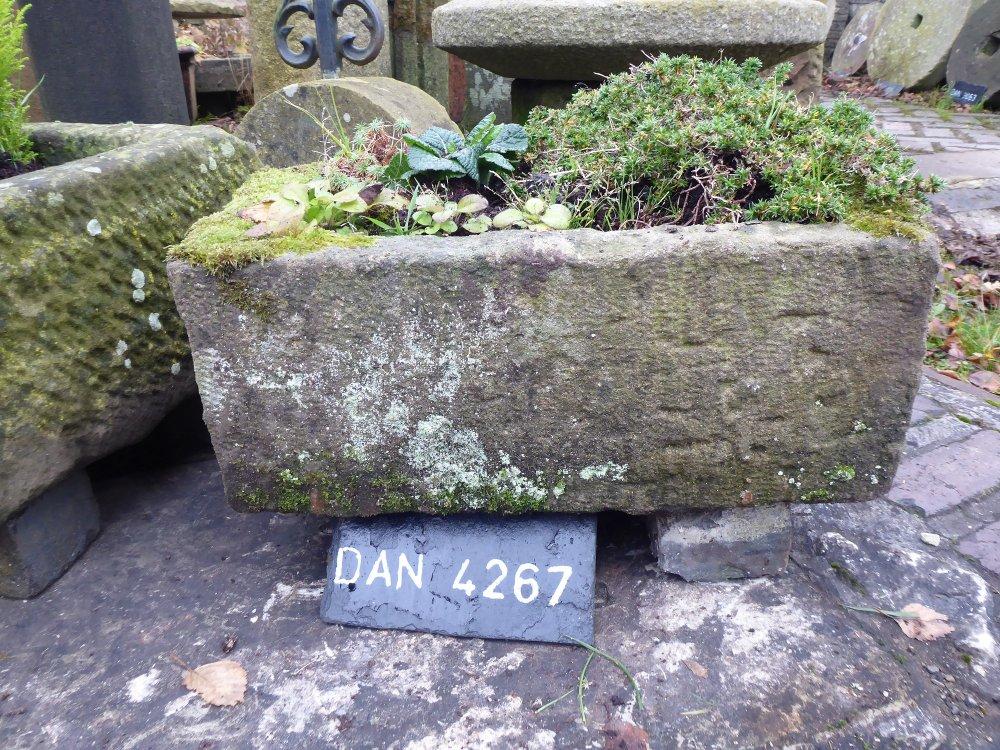 DAN 4267