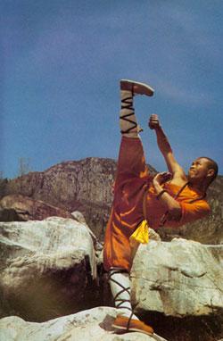 Shaolin Monk 35e Prestige Class  DD Wiki