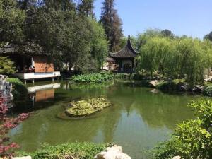 active meditation zen gardens