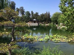 zen garden temple