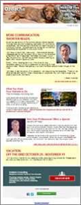 Internet marketing newsletter for October, 2013