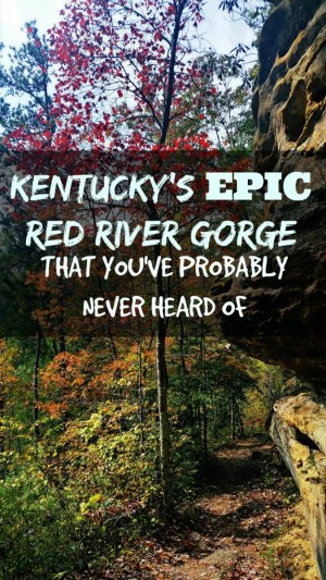 Kentucky's Red River Gorge