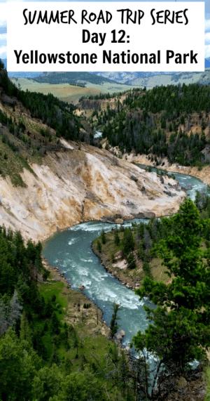 Northeast Yellowstone Pin