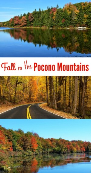 Looking for fall foliage in the Pocono Mountains? Find the best places to discover autumn in Eastern Pennsylvania.