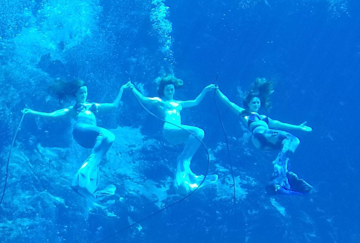 Twiggle Box: Weeki Wachee Mermaids | Underwater Ballet ... |Meet Weeki Wachee Mermaids