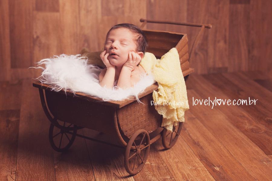 danibonifacio-lovelylove-fotografia-ensaio-book-newborn-recemnascido