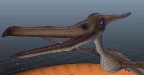 Pterodactyl - Topology