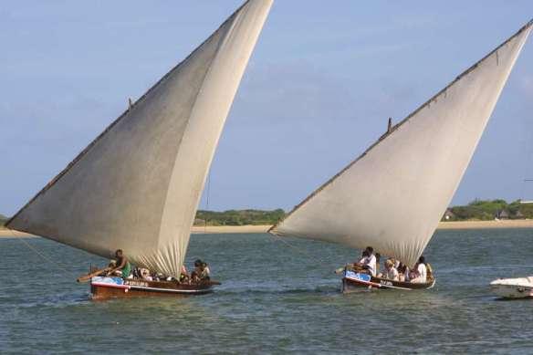 Lamu dhow race