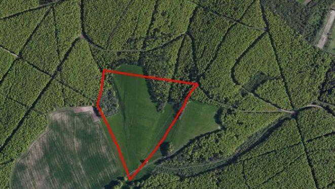 L'area di indagine comprendeva Lamb Lea, il territorio all'interno della linea rossa tra Hampshire e la valle del fiume Arun. Foto di Ente Parco Nazionale South Downs