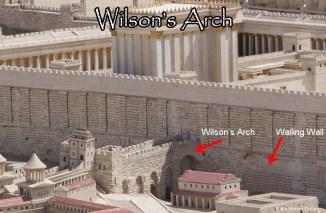 Arco di Wilson