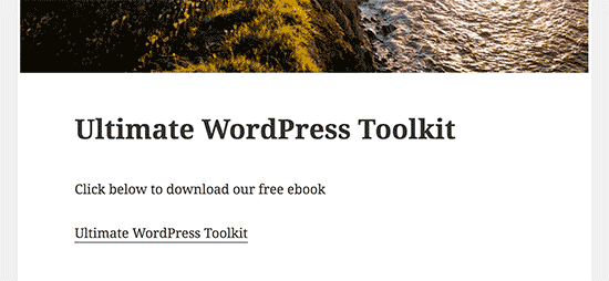 PDF file download link in a WordPress blog post