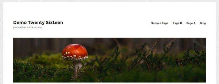 Menu and header image added to the Twenty Sixteen masthead.