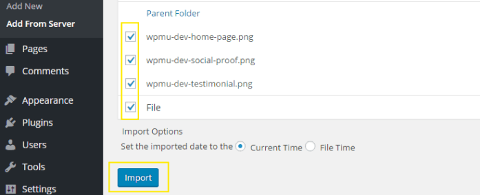 "The ""File"" checkbox has been clicked and the Import button is highlighted."