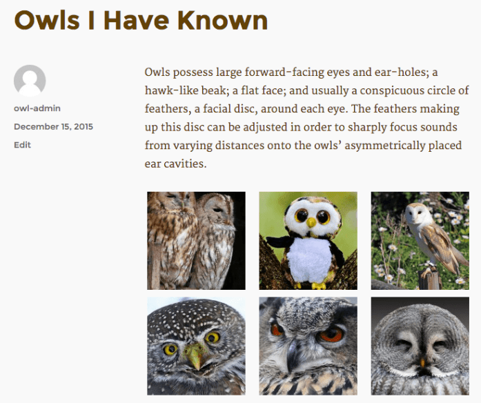 Owl gallery displaying on the front end.
