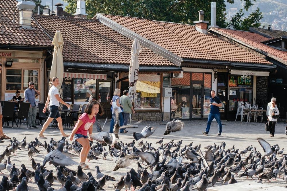 Sarajevo_BirdStorm