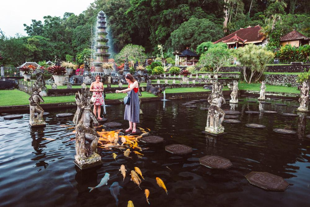 Bali_TirrtaGangaFishFeeding