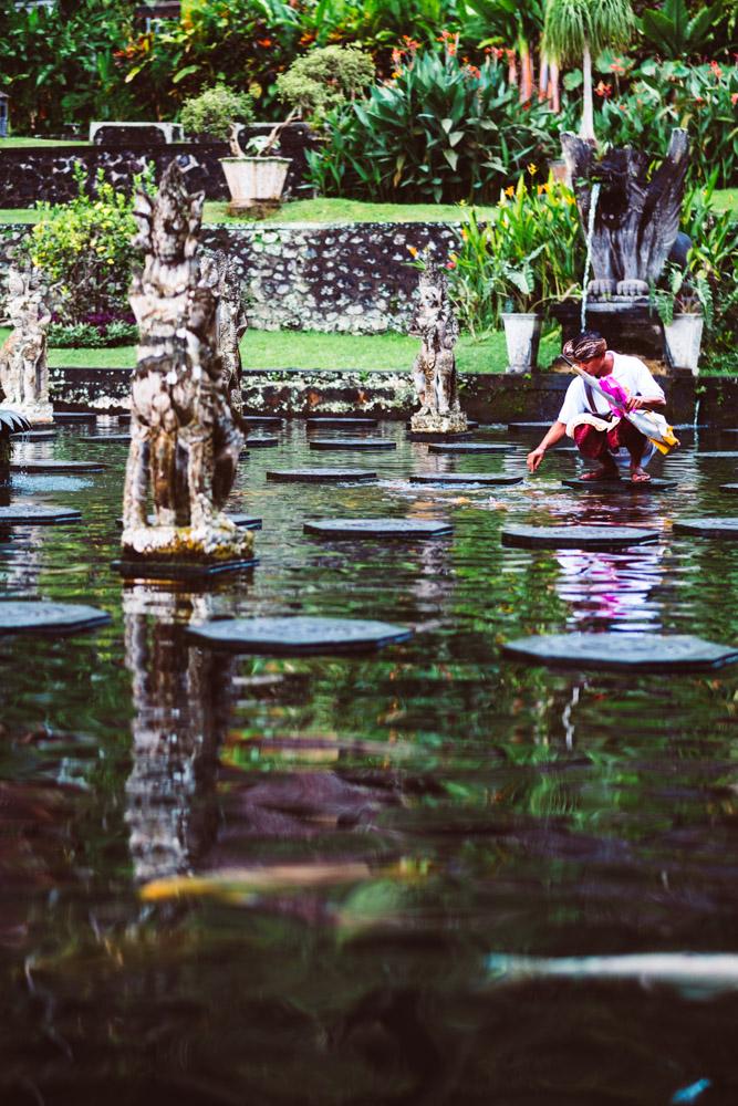 Bali_TirrtaGangaGuideFeedingFish