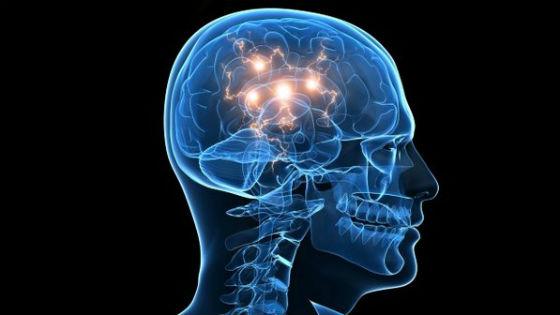 Resultado de imagem para cerebro quantico-imagens