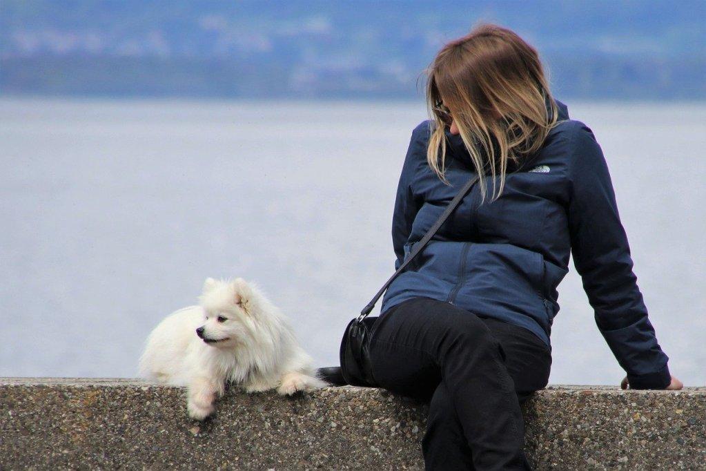 girl, white dog, musings