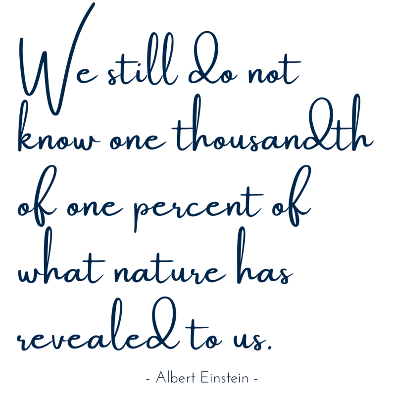 We still do not know one thousandth of one percent of what nature has revealed to us - Albert Einstein-