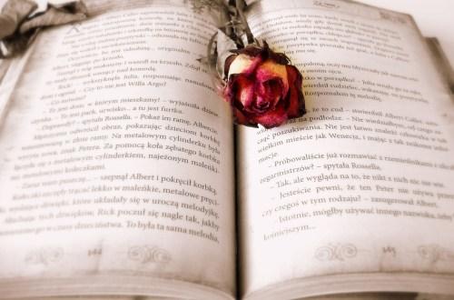 Boek met roos. Ik hou van mij. lezen goed