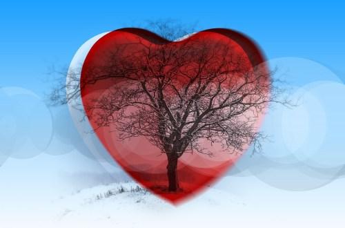 Vrijheid om lief te hebben