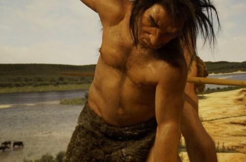 neanderthaler, De man