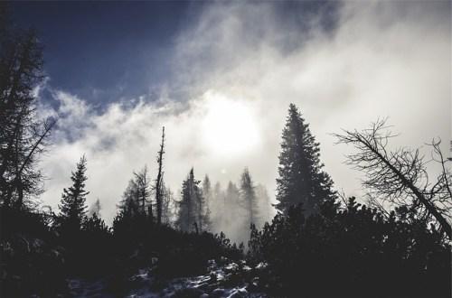 gedicht: winter