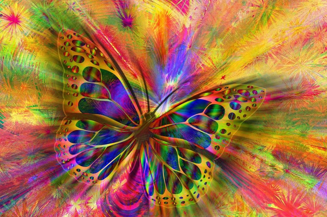 vlinder, talent